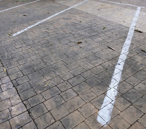 Brick Pavers Cleaning & Maintenance